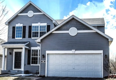 Circle Pines Single Family Home For Sale: 246 Pine Hollow Drive