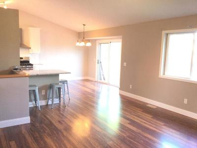 Otsego Single Family Home For Sale: 7850 Park Avenue NE
