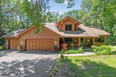 Hennepin County Single Family Home For Sale: 655 Trails End Road