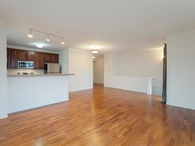 Hennepin County Condo/Townhouse For Sale: 560 N 2nd Street #409
