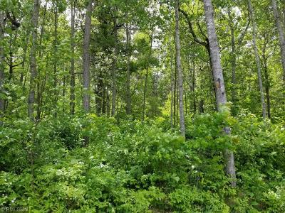 Pequot Lakes Residential Lots & Land For Sale: Lot 14 Redstone Trail