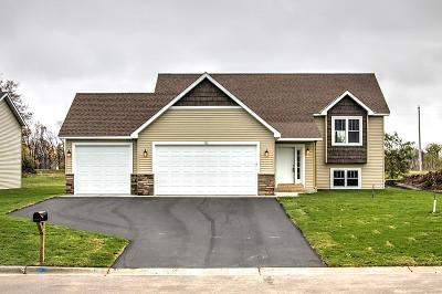 Cambridge Single Family Home For Sale: 1707 Jefferson Street S