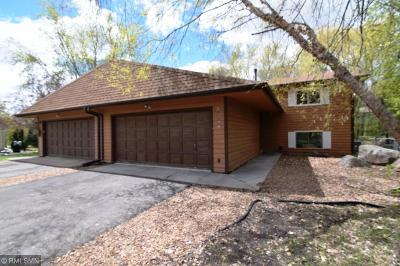 Savage Single Family Home For Sale: 13750 Webster Court