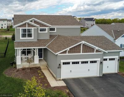 Rosemount Single Family Home For Sale: 13979 Addison Avenue