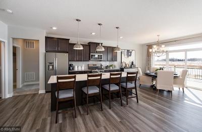 Otsego Single Family Home For Sale: 5246 Randolph Avenue NE