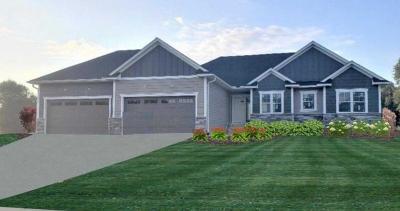 Ham Lake Single Family Home For Sale: 180 173rd Lane NE