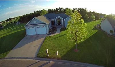 Ottertail, Battle Lake, Perham Single Family Home For Sale: 1007 12th Court NW