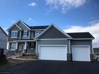 Anoka County Single Family Home For Sale: 411 143rd Avenue NW