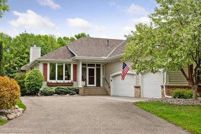 Tonka Bay Single Family Home For Sale: 25 Echo Bay Drive