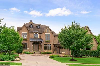 Eden Prairie Single Family Home For Sale: 9610 Sky Lane
