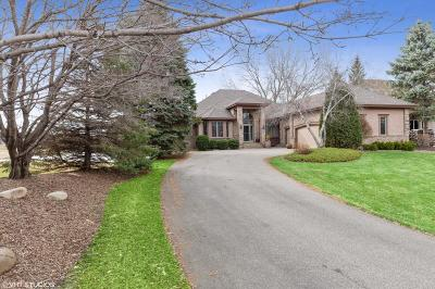 Eden Prairie Single Family Home For Sale: 9250 Breckenridge Lane