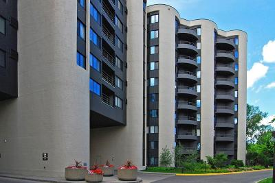 Minneapolis Condo/Townhouse Coming Soon: 3145 Dean Court #605