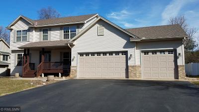 Anoka County Single Family Home For Sale: 23633 Flora Court NW