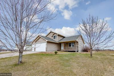 Dassel Single Family Home For Sale: 113 Highview Drive