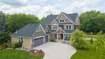 Mahtomedi Single Family Home For Sale: 160 Wildwood Court