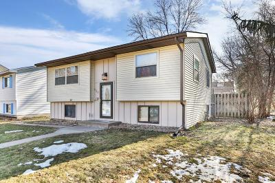Saint Paul Single Family Home For Sale: 620 Pleasant Avenue