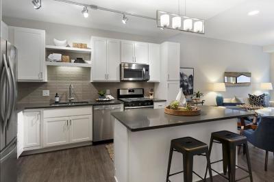 Minneapolis Rental For Rent: 212 10th Avenue #609