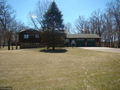 Stearns County Single Family Home For Sale: 22845 County Road 40