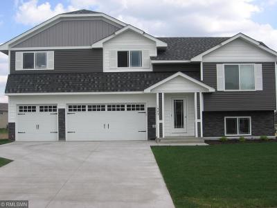 Howard Lake Single Family Home For Sale: 421 Terning Way