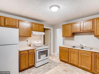 Saint Paul Single Family Home For Sale: 99 Sycamore Street W