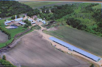 Stearns County Farm For Sale: 42716 County Road 3