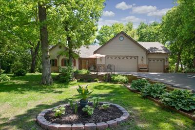 Wyoming Single Family Home For Sale: 27163 Ironwood Court