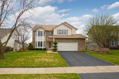 Eden Prairie Single Family Home For Sale: 9012 Belvedere Drive
