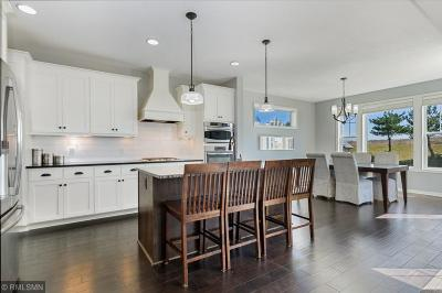 Lakeville Single Family Home For Sale: 16774 Diamonte Path