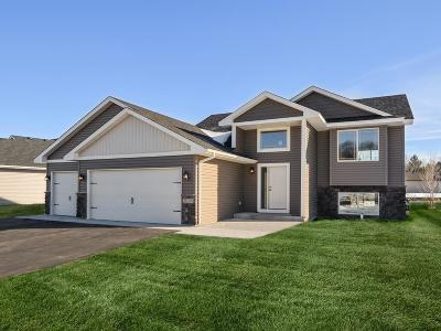 Rush City Single Family Home For Sale: 460 Alcott Street E