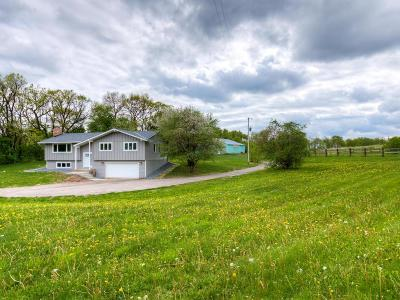 Scott County Single Family Home For Sale: 23770 Natchez Avenue