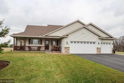 Saint Francis Single Family Home For Sale: 24332 Yukon Street NW