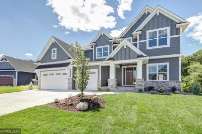 Saint Michael MN Single Family Home For Sale: $795,000