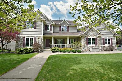 Inver Grove Heights Single Family Home For Sale: 6229 Boxman Path