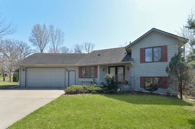 Eden Prairie Single Family Home For Sale: 6534 Grandview Drive