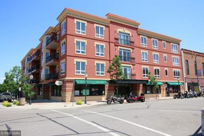 Lake City Condo/Townhouse For Sale: 101 S Washington Street #303