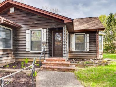 South Saint Paul Single Family Home For Sale: 1710 Pleasant Avenue