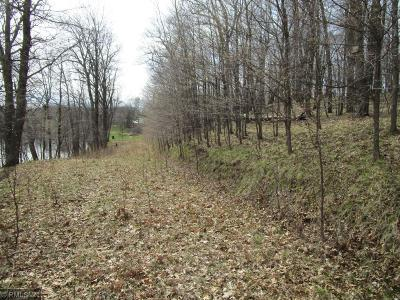 Aitkin Residential Lots & Land For Sale: Tract C Daisy Street