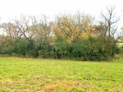 Rochester Residential Lots & Land For Sale: 4091 Riley Lane SW