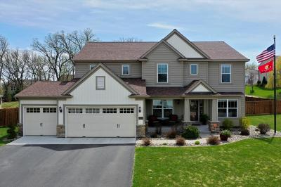 Cottage Grove Single Family Home Contingent: 6699 Timber Ridge Lane Court