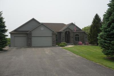 Ellsworth Single Family Home For Sale: W9665 570th Avenue