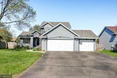 Blaine Single Family Home For Sale: 12694 Johnson Street NE