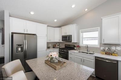Blaine Single Family Home For Sale: 11296 Pierce Street NE