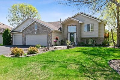 Blaine Single Family Home For Sale: 8761 Alamo Circle