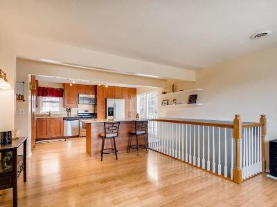 Carver, Eden Prairie, Chanhassen, Chaska Single Family Home For Sale: 31 Hill Street