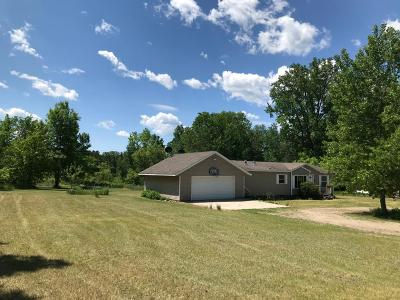 Pillager Single Family Home For Sale: 13217 Whitetail Lane SW