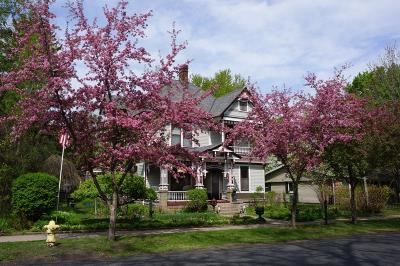 Bayport Single Family Home For Sale: 114 4th Street N