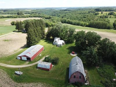 Pepin County Single Family Home For Sale: N3145 Nelson Road