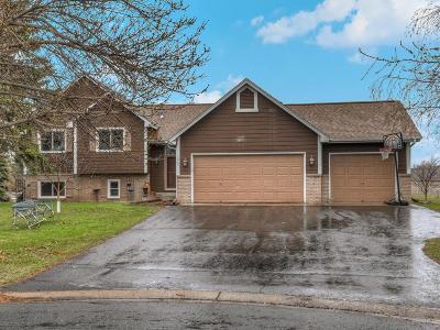 Blaine Single Family Home For Sale: 13205 Mankato Street NE