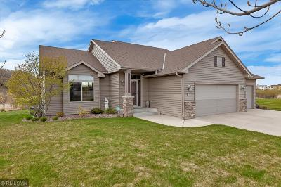 Sartell, Sauk Rapids Single Family Home For Sale: 1256 Osauka Road NE