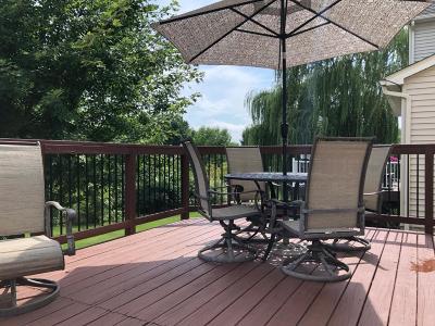 Chaska Single Family Home For Sale: 2345 Kelm Street